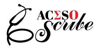Aceso Scribes LLC